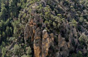 rocas-calizas-bosque-de-pinos