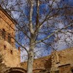 Argamillasa de Alba en Ciudad Real