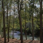 Parque Natural de Las Hoces de Cabriel