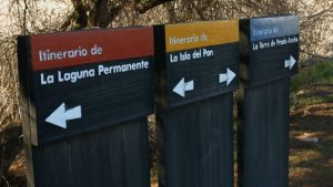 itinerarios-en-las-tablas-de-daimiel