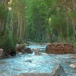 Parques naturales de Guadalajara