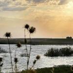 Este verano en Castilla La Mancha (II)