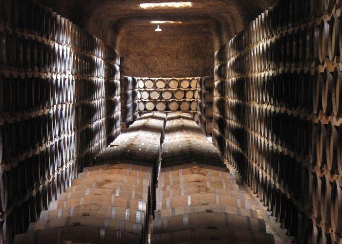 Ruta Enoturística Caminos del Vino de Castilla la Mancha